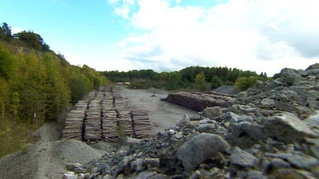 Lea Quarry, Wenlock Edge