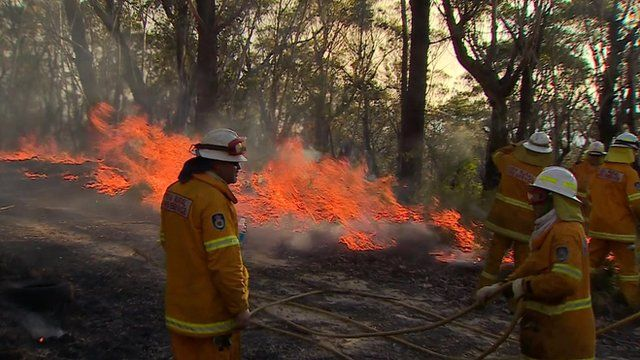 """Firefighters """"back-burning"""" in New South Wales"""