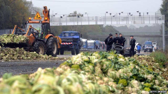 Diggers clear cauliflowers from a French highway