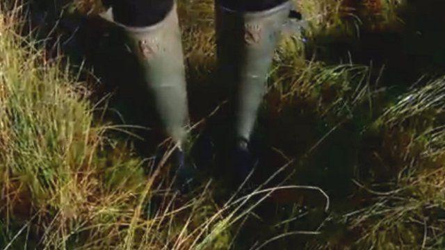 Wellies in a peat bog