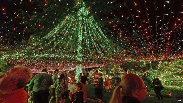 Canopy of Christmas lights