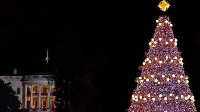 National Christmas tree in Washington DC
