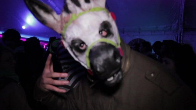 Man at club wearing horse mask