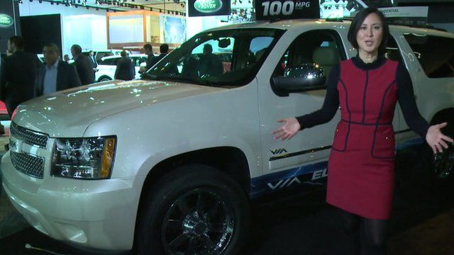 Michelle Fleury with a VIA truck