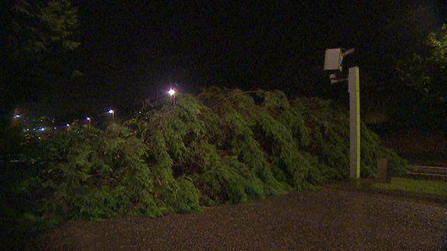 A fallen tree blocks a road