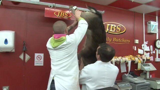 Butchers hanging up deer in shop