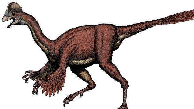 The dinosaur Anzu wyliei