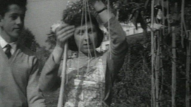 Woman picking 'spaghetti'
