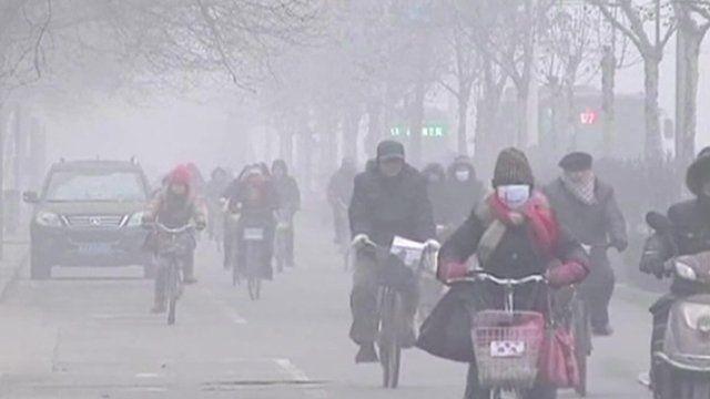 People wearing face masks on bikes