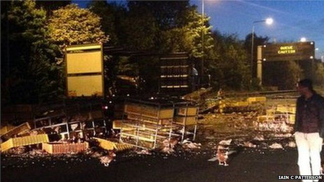 Chickens on the M62 after a lorry crash