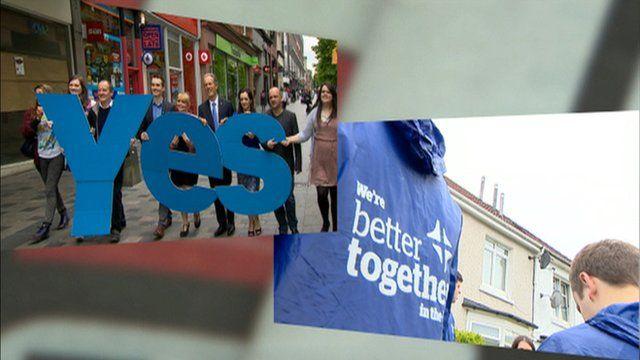Referendum campaign groups