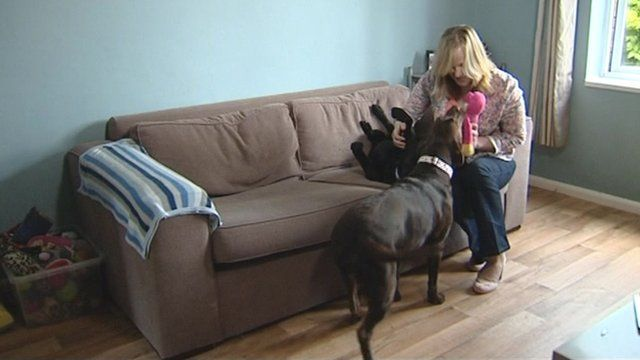 Victoria Spry at home with her dogs