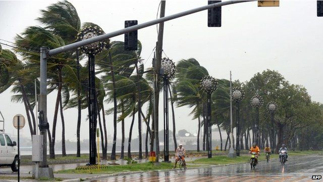 Strong winds blowing trees