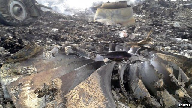 The site of a Malaysia Airlines Boeing 777 plane crash is seen at the settlement of Grabovo in the Donetsk region