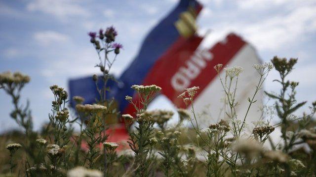 Plane wreckage in a field