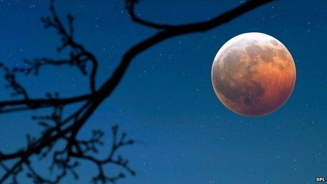 The Moon (c) SPL