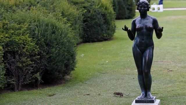A rat runs next to a Maillol Statue in the Tuileries gardens of the Louvre Muesum in Paris