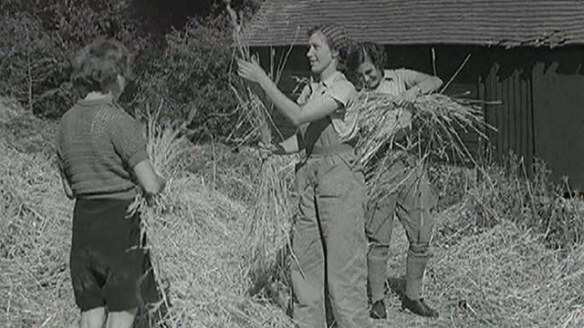 Land Girls working in a field