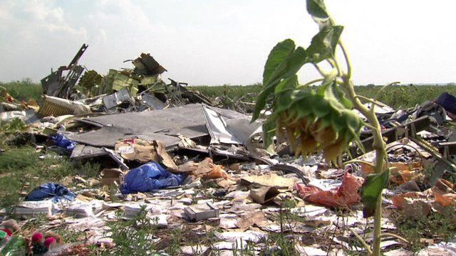 Flower grows at MH17 crash site