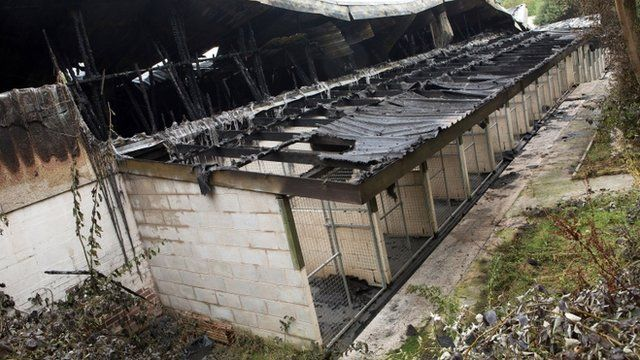 Burned-out kennels at Manchester Dogs' Home