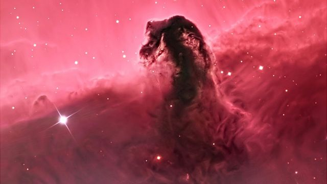 Horsehead Nebula (Bill Snyder)