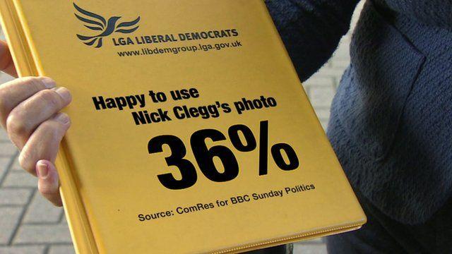 Lib Dem survey graphic