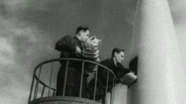 Still from archive footage of Strelka and Belka being loaded into a space rocket