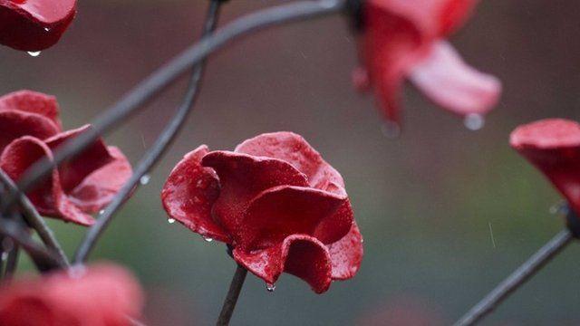 Ceramic poppies