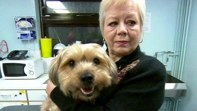 Dog owner Lorraine Jones and Frankie
