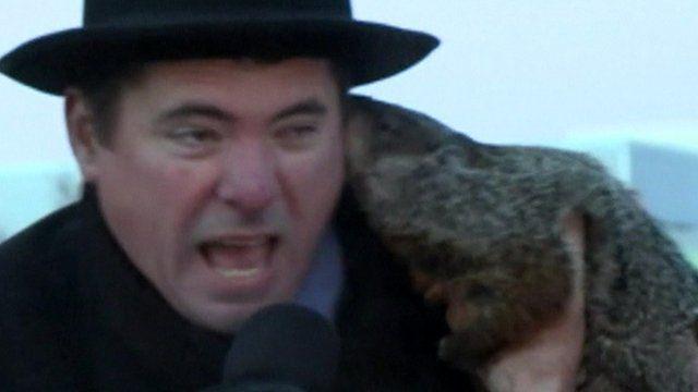 Jonathan Freund being bitten by Jimmy the groundhog