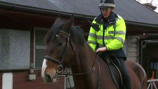 Police horse Brian