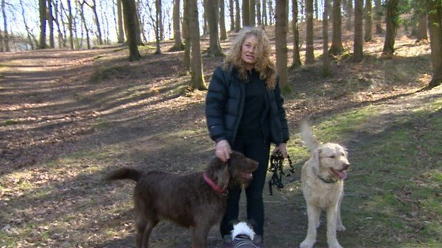 Alison Bluett with her dogs in the Forest of Dean