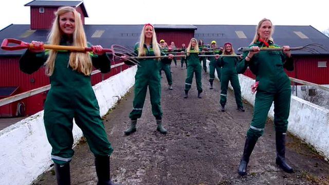 Norwegian girls do dance routines using rakes
