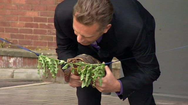Chris Packham with a tortoise