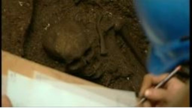 Worker studying skeleton found in excavation