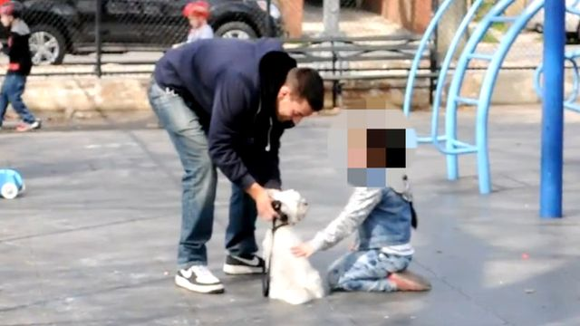 Child petting a man's dog in playground