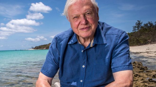 david attenborough life