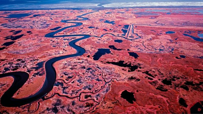 O impacto destruidor do aquecimento global no Alasca