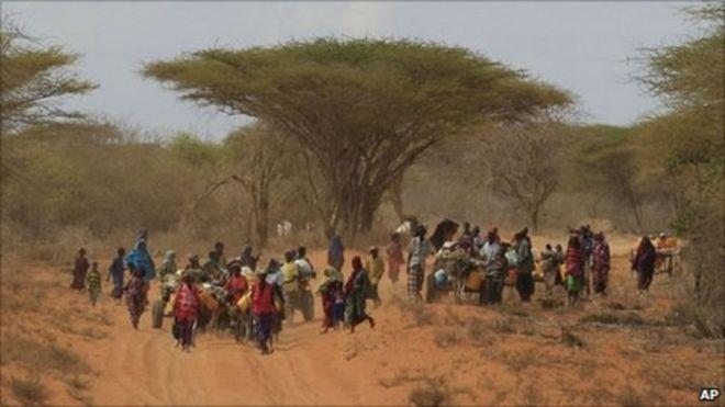 Dadka abaaruhu ku halakeeyeen Geeska Afrika