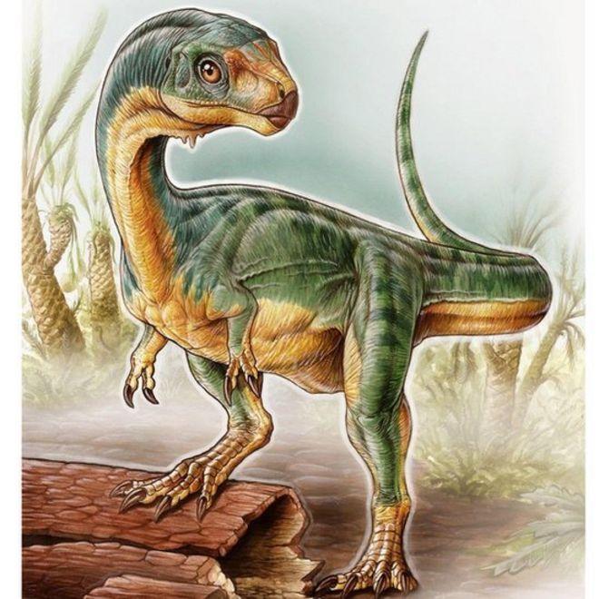 Resuelven el misterio del Chilesaurus, el