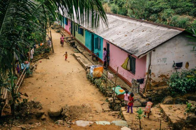 مساكن عاملين في جمع الشاي