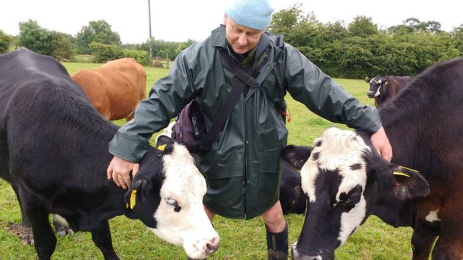 Jay Wilde with his cows