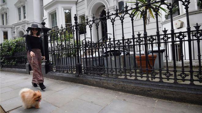 Una mujer pasea su perro por una calle de Kensington.