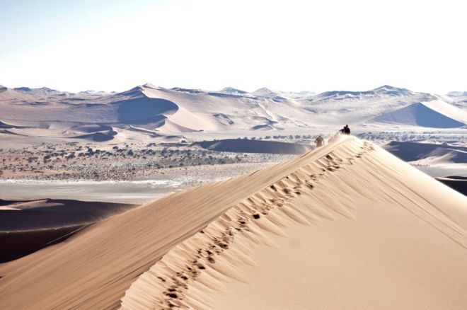 Big Daddy ở sa mạc Sossusvlei của Nambia