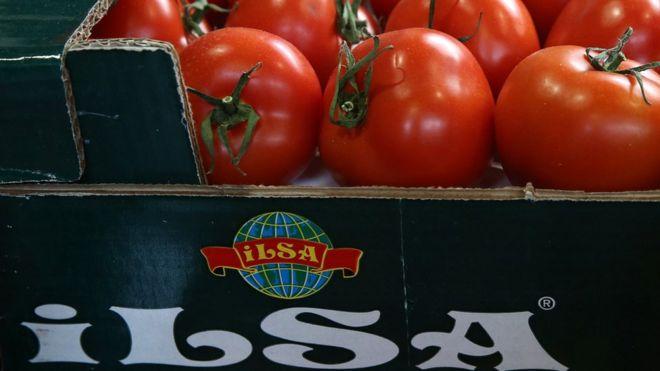 Запрет импорта турецких товаров в россию