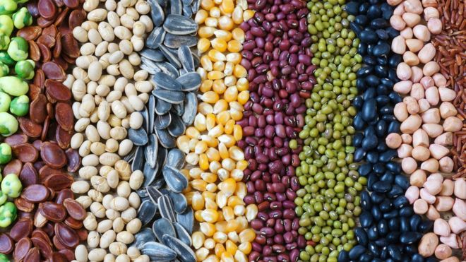 Granos y semillas