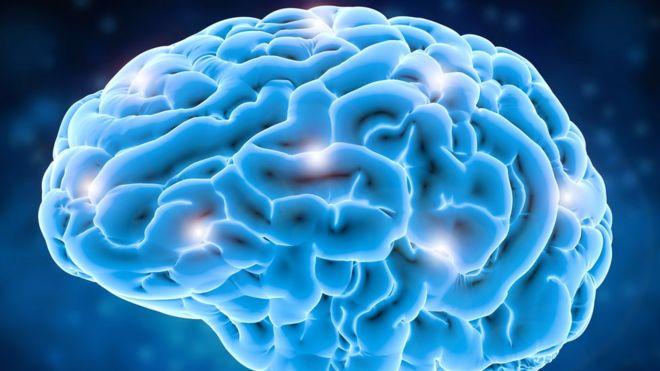 La imagen de un cerebro azul