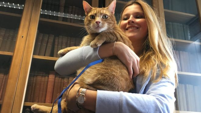 Cat Relieves Stress at Cambridge University