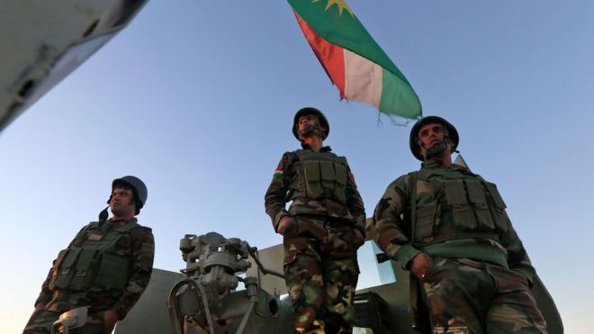 Almanya Peşmergelere askeri eğitimi askıya aldı