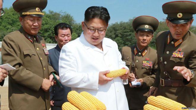 फिर खाते क्या हैं उत्तर कोरियाई?